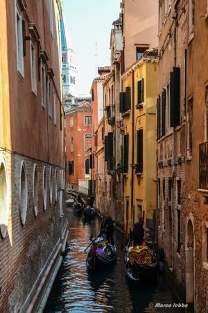 Venezia 2015-99